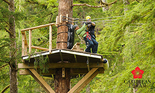 Combo Zip Line + Safari + Lunch + Horsesback Ride $99