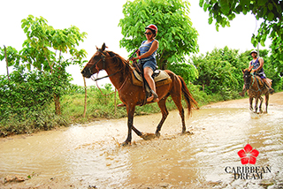Combo Catamaran + Horsesback Ride + Lunch $99