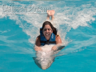 ridin dolphin belly