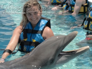 dolphin hot girl