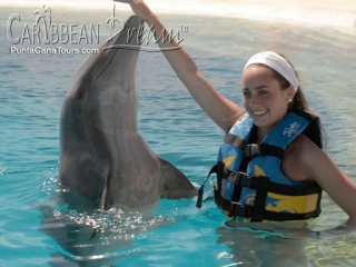 dolphin pretty girl