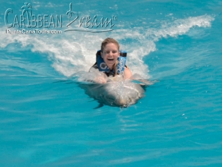 dolphin ride belly