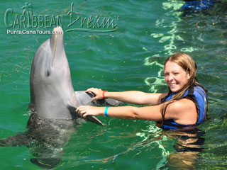 Handshake with a Dolphin