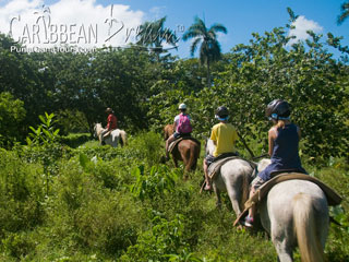 Riding Horses in Punta Cana