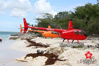 Saona Island by Helicopter From $299